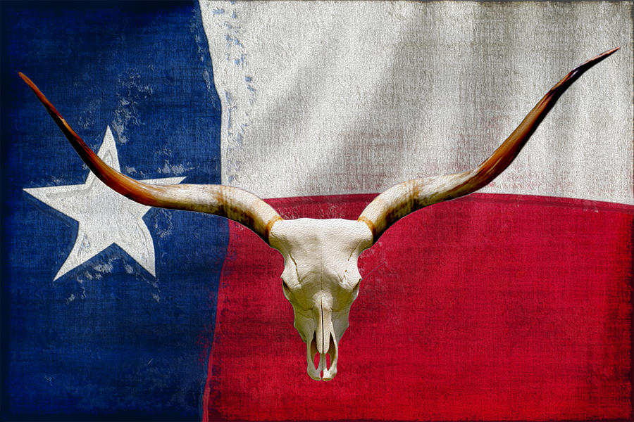 Texas Painting - Longhorn Of Texas 2 by Jack Zulli
