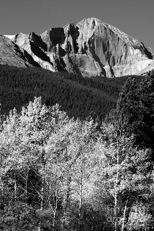 Longs Peak Photograph - Longs Peak 14256 Ft by James BO Insogna