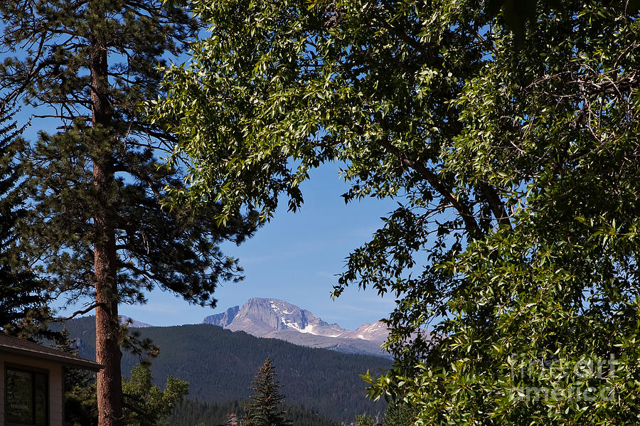 Rocky Mountains Photograph - Longs Peak Through The Trees by Kay Pickens