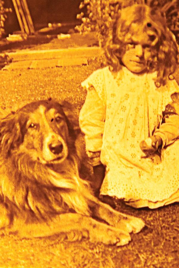 Look Doggie by David Davies