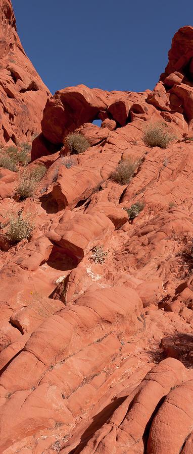 Desert Photograph - Look Through by Wayne Vedvig