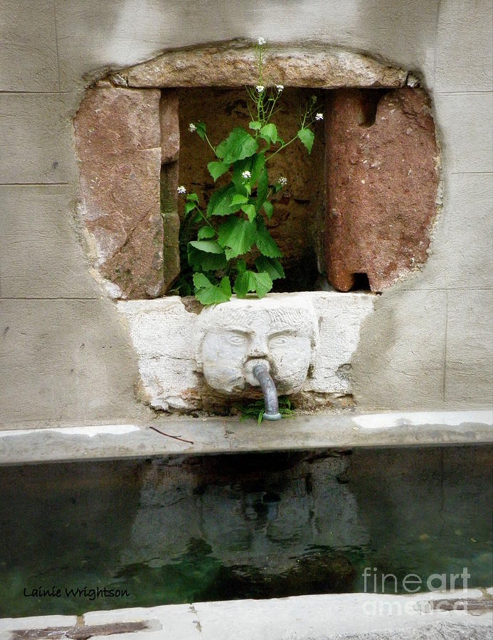 Fountain Photograph - Looking Deeper by Lainie Wrightson