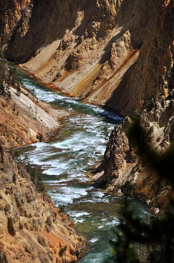 Yellowstone National Park Photograph - Looking Down by Marty Koch