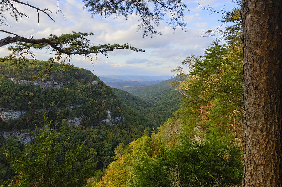 Autumn Photograph - Looking Down The Canyon by Steve Samples