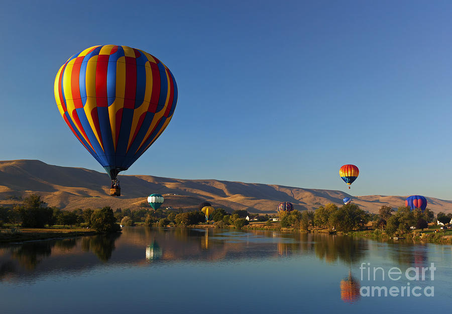 Balloons Photograph - Looking For A Place To Land by Mike  Dawson