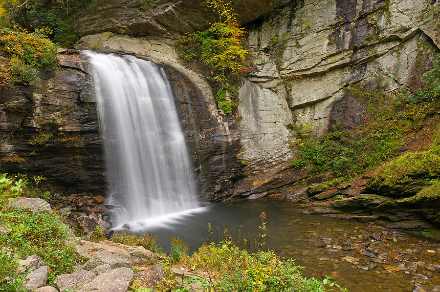 Brevard Photograph - Looking Glass Falls   Pigah National Forest North Carolina by Willie Harper