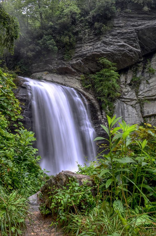 Waterfall Digital Art - Looking Glass Falls by Bob Jackson