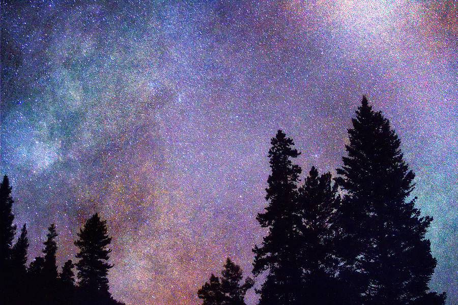 Stars Photograph - Looking Into The Heavens by James BO  Insogna