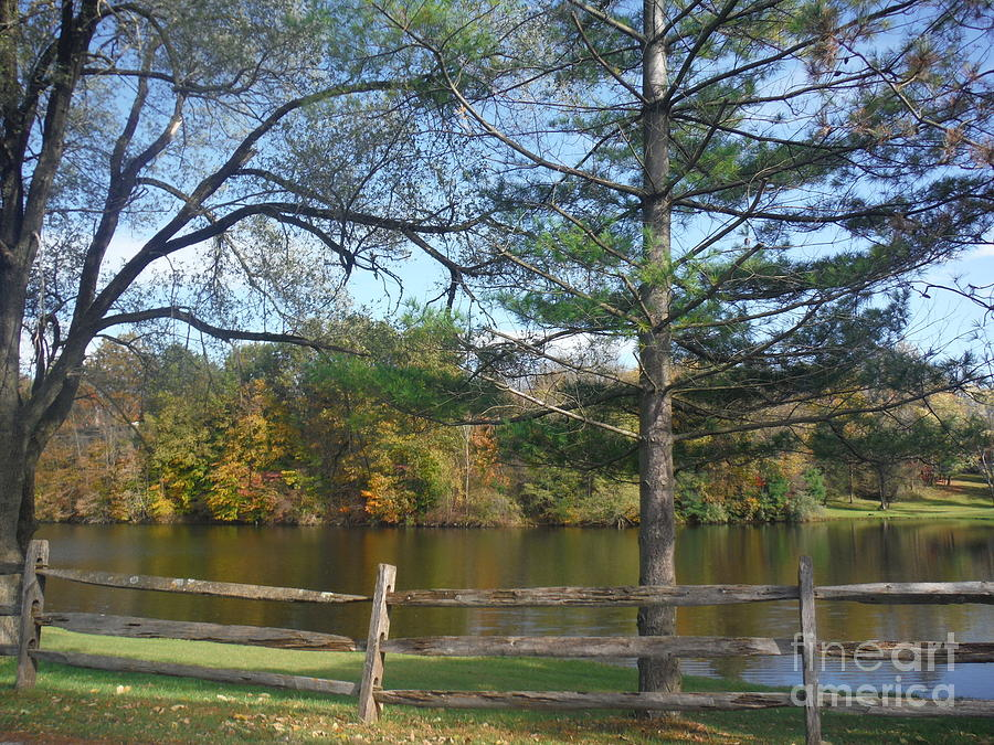 Nature Photograph - Looking Over The Pond by Linda Walker