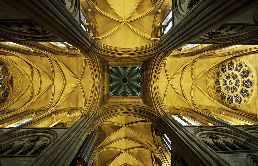 Looking Up At A Cathedral Ceiling Photograph by James Ingham / Design Pics