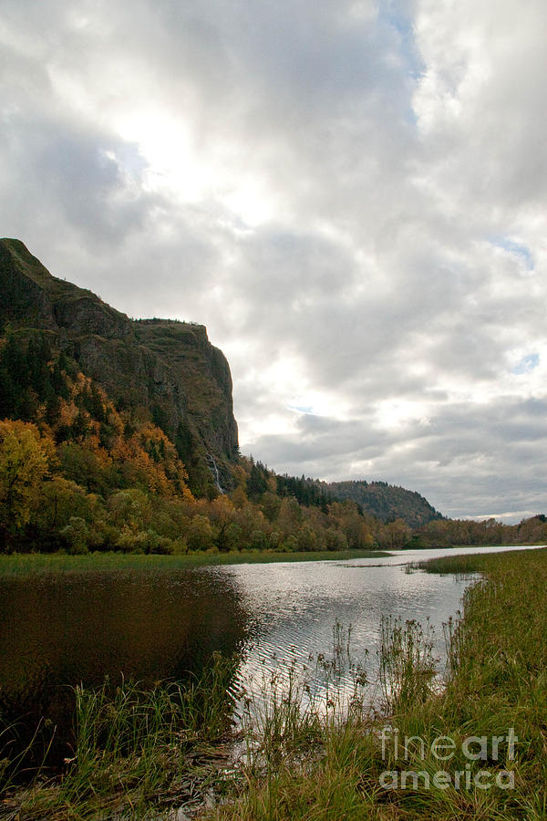 Cliffs Photograph - Looking Up At Crown Point by Cari Gesch