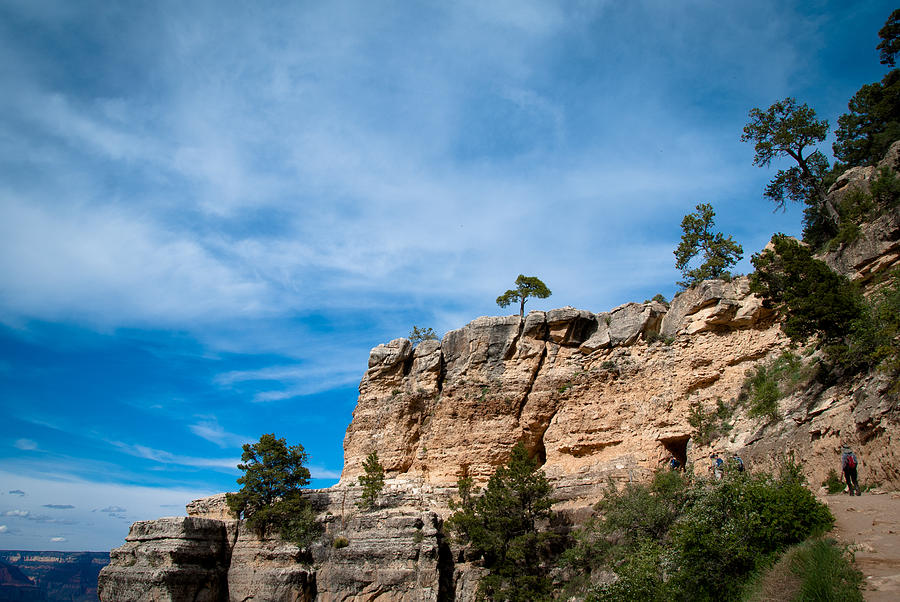 Grand Canyon Photograph - Looking Up by Nickaleen Neff