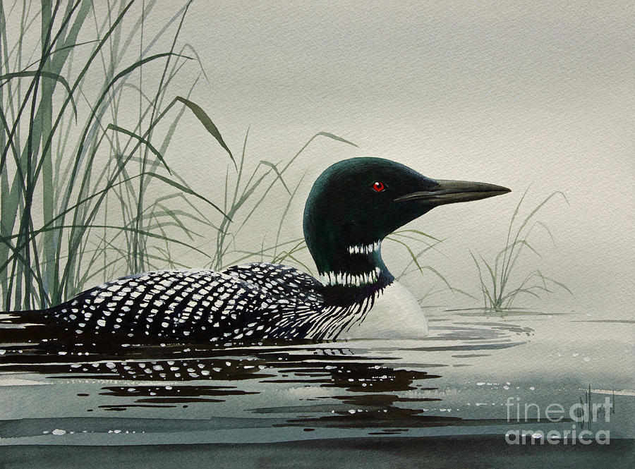 Loon Near The Shore Painting By James Williamson