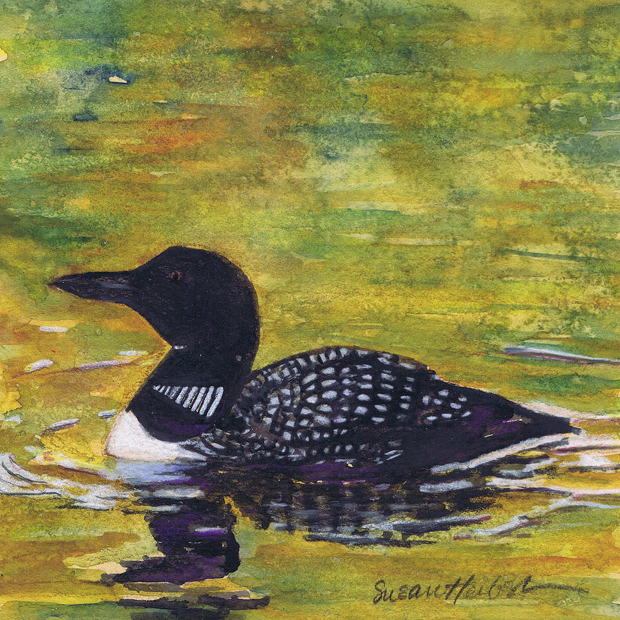 Loon On Jordon Pond Maine Painting by Susan Herbst