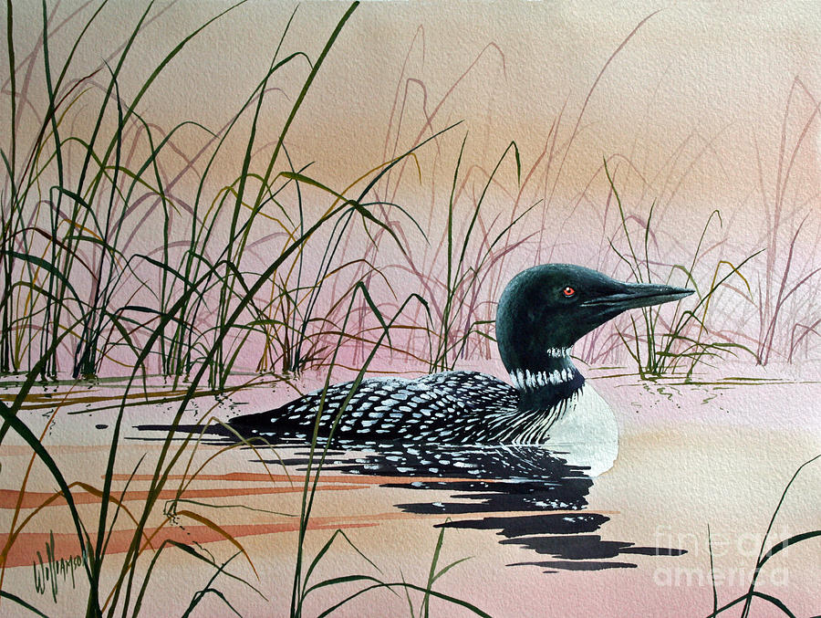 Loon Painting - Loon Sunset by James Williamson