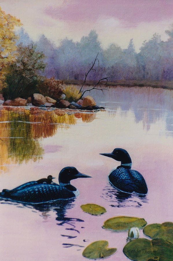 Loon Painting - Loons At Twilight by Brenda Thour