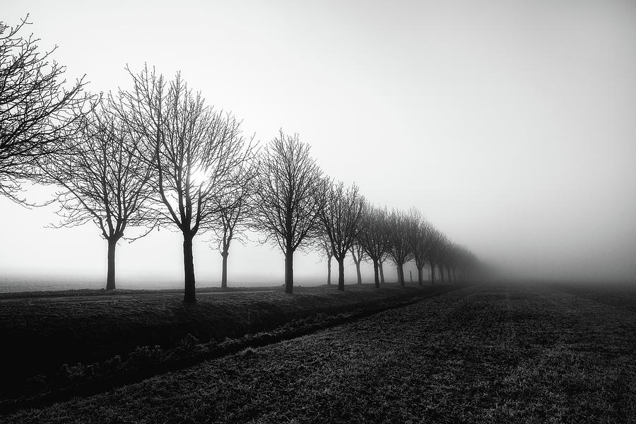 Fog Photograph - Losing Sight by Christophe Staelens