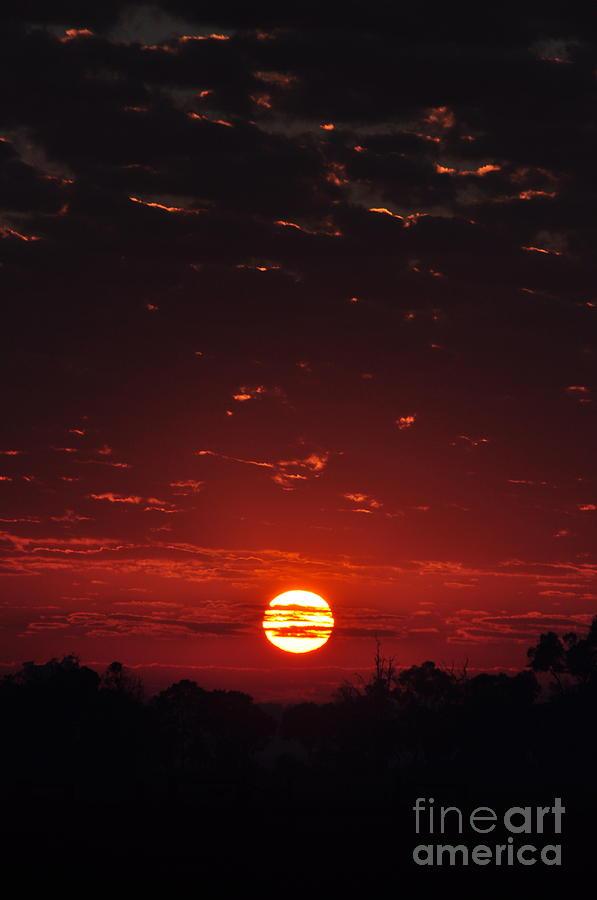 Sun Photograph - Loss Sunlit Oracle  by Coralie Plozza