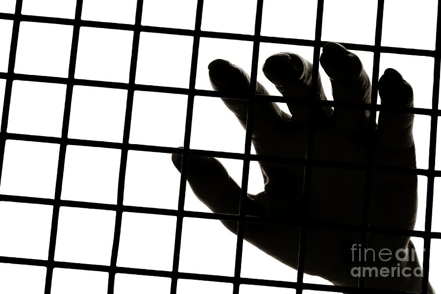 Hand Photograph - Lost Freedom by Olivier Le Queinec
