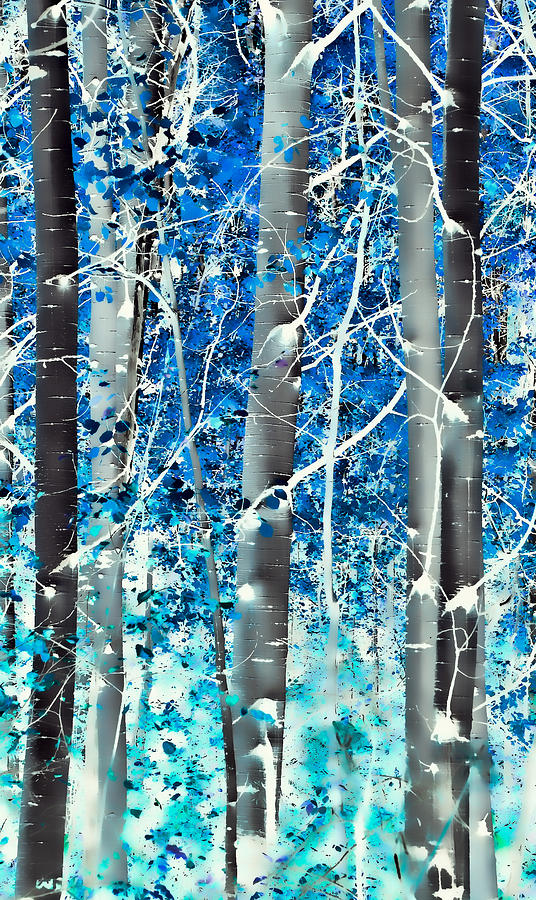 Aspens Photograph - Lost In A Dream by Don Schwartz