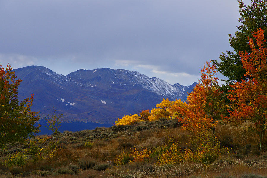Colorado Photograph - Lost In Autumn by Jeremy Rhoades