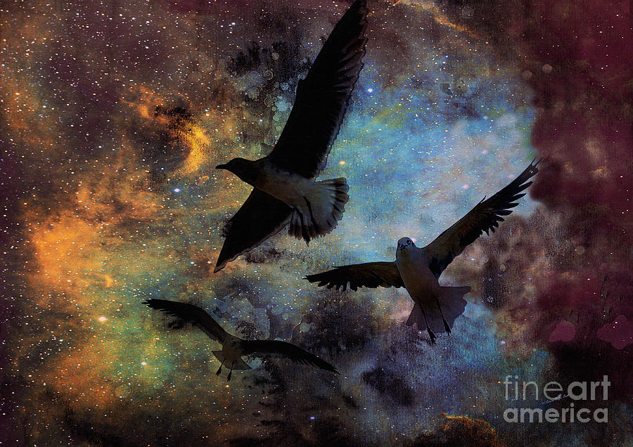 Lost in Space by Patricia Griffin Brett
