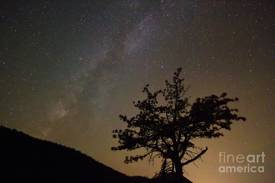 Stars Photograph - Lost In The Night by James BO  Insogna