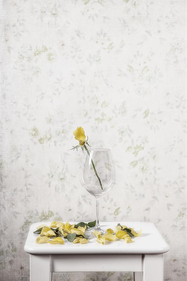 Rose Photograph - Lost Petals by Joana Kruse