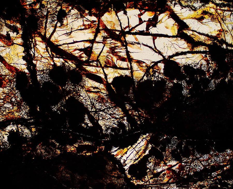 Lost Souls by Hodges Jeffery