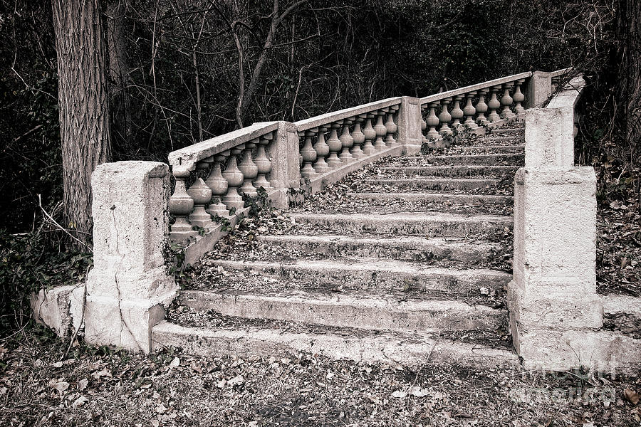 Stairs Photograph - Lost Staircase by Olivier Le Queinec