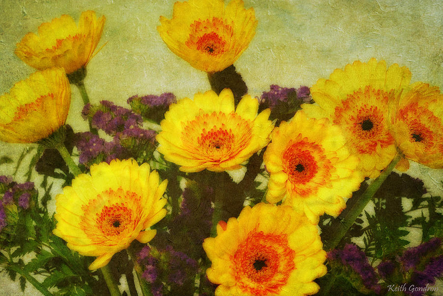 Bouquet Photograph - Lots of Daisies by Keith Gondron