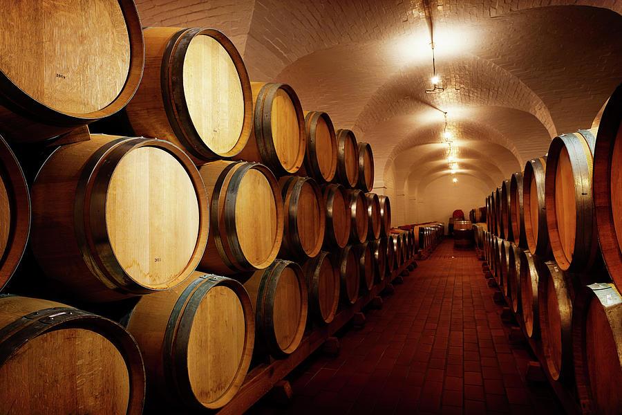Lots Of Future Wine Oak Barrels Photograph by Rapideye