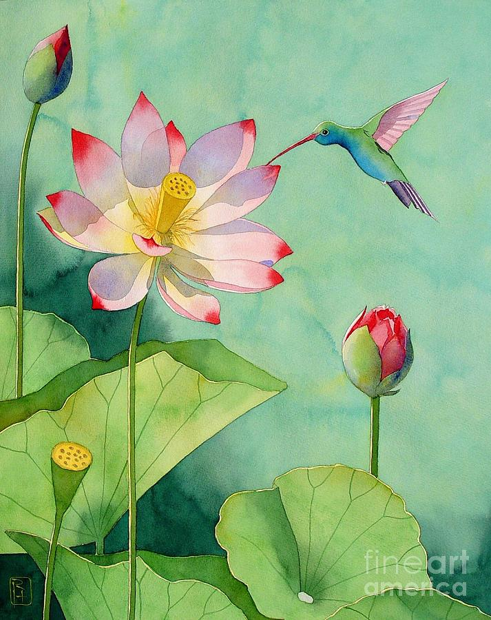 Watercolor Painting - Lotus And Hummingbird by Robert Hooper
