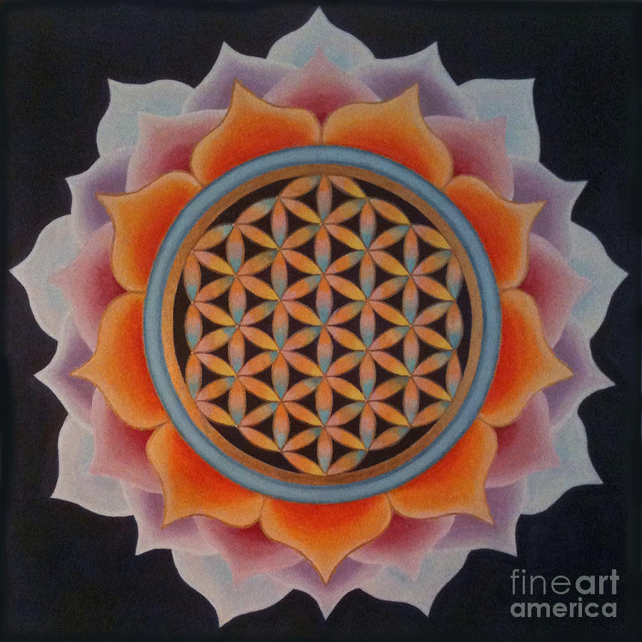 Mandala Painting - Lotus Of Life by Mayki Wiberg