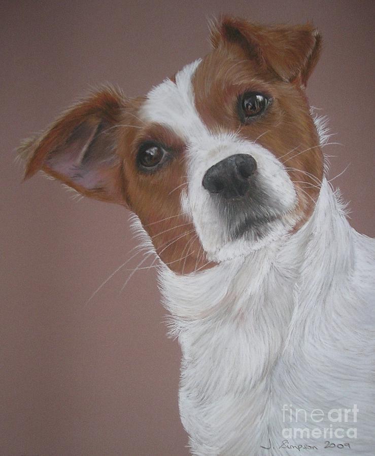 Pastel Pet Portrait Pastel - Louis by Joanne Simpson
