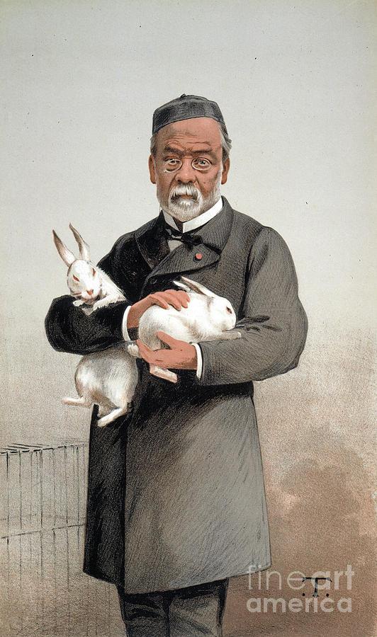 1887 Drawing - Louis Pasteur by Granger