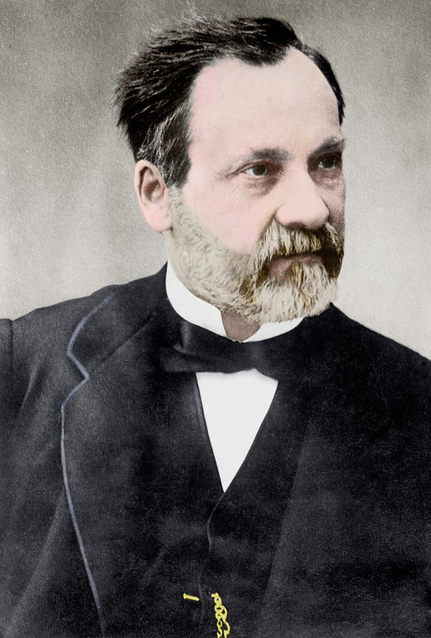 Louis Pasteur Photograph By Library Of Congress
