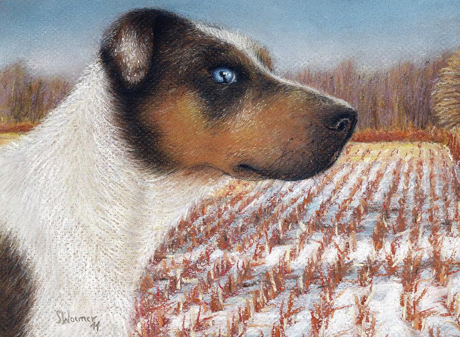 Dog Painting - Louisiana Catahoula Leopard Dog by Stephanie Woerner