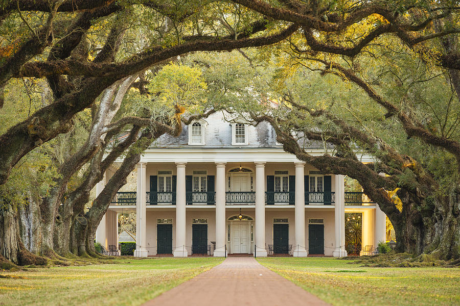 Louisiana Southern Oak Alley Plantation Architecture With Tree Canopy Photograph by Boogich