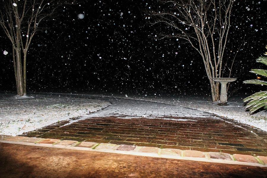 Snow Photograph - Louisiana Winter by Hannah Miller