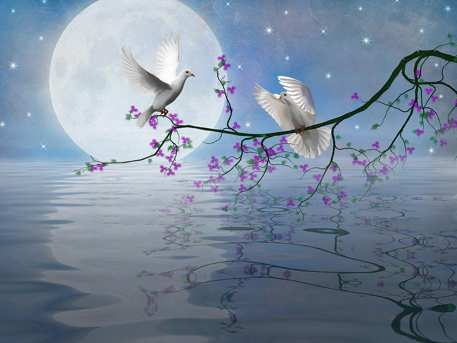 This is a picture of Zany Birds In The Moon Drawing