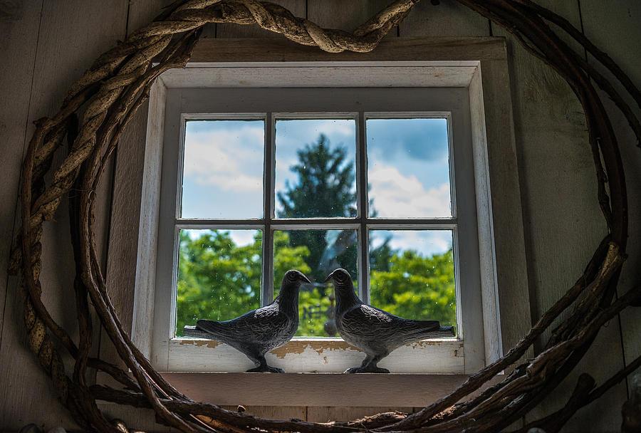 Pennsylvania Photograph - Love Birds by Kristopher Schoenleber