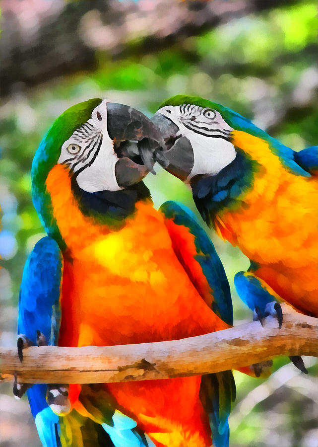 Blue Painting - Love Bites - Parrots In Silver Springs by Christine Till