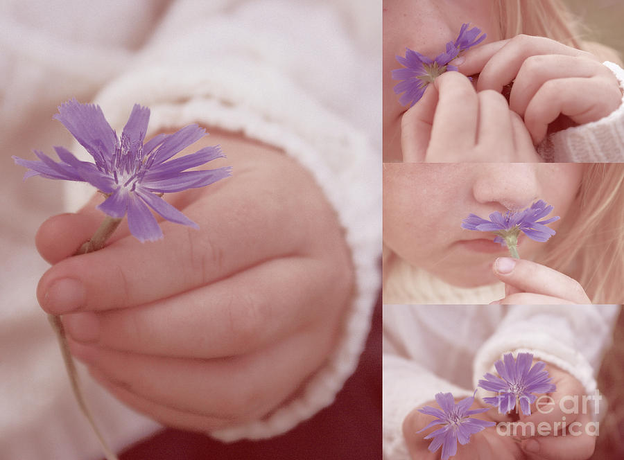 Child Photograph - Love Giving Multi Dypthic - 01 by Aimelle