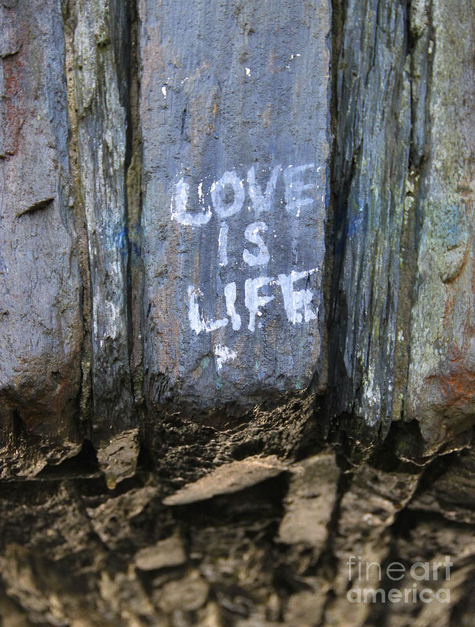 Love Is Life Photograph - Love is Life by Mike Mooney