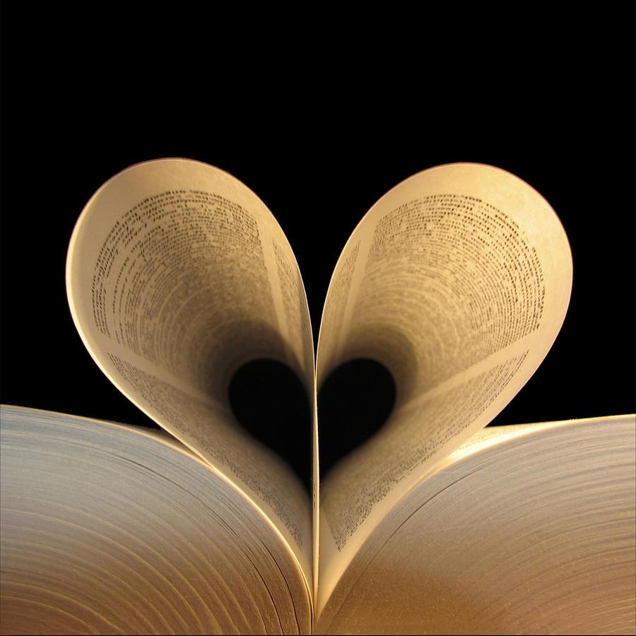 Book Photograph - Love Reading II by Illusorium Illustration