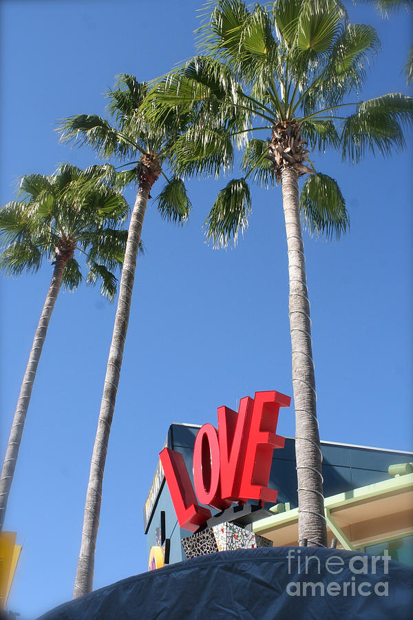 Love Sign Wolfgang Puck's Disney Orlando Photograph by ...