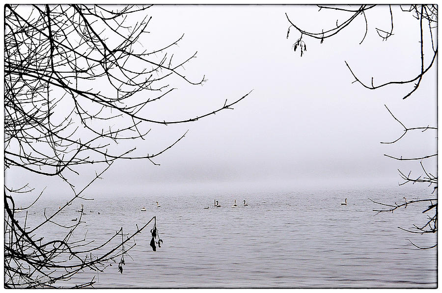 Terra Blanca Photograph - Love Story by Sarai Rachel