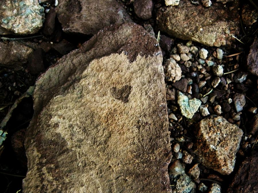 Rocks Photograph - Love Will Find You by Christian Rooney