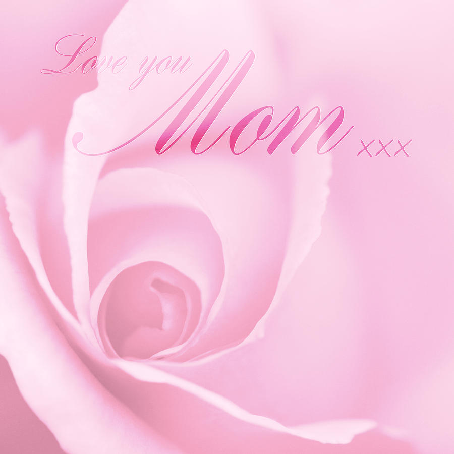 Mother's Day Photograph - Love You Mom Pink Rose by Natalie Kinnear